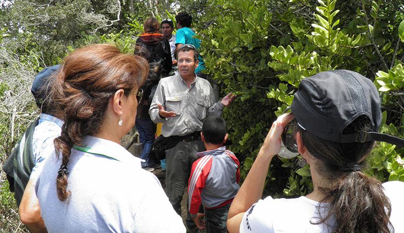 Ingreso gratuito a parques nacionales de Conaf
