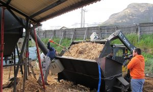 Inauguran primera planta del país que genera energía en base a gasificación de biomasa