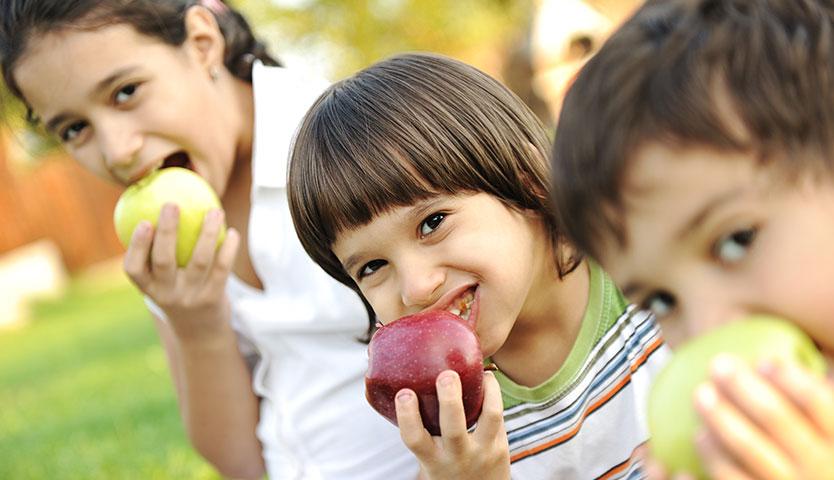 Nuevo estudio: colación no debe superar el 15% de calorías diarias que requiere un niño