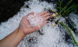 Preocupación por daños causados por lluvia y granizo a la agricultura
