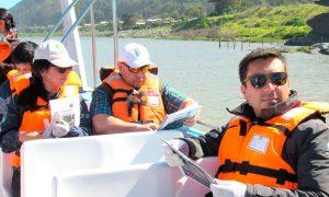 Nuevo circuito de aviturismo en desembocadura del Río Mataquito