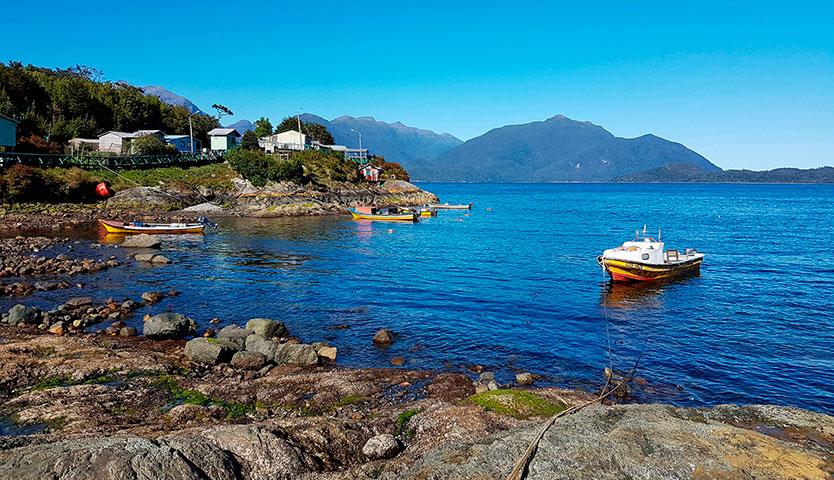 Microalgas de costas chilenas sufren los efectos del cambio climático