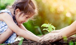 COP 14: nuevo acuerdo para detener pérdida de biodiversidad