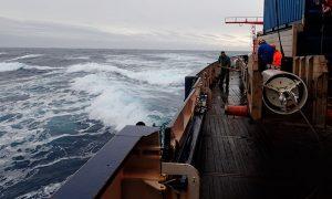 Científicos reconstruyen la evolución climática del Seno de Reloncaví