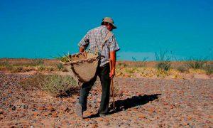"""Doctor en bioclimatología: """"Llevamos 8 años de sequía con unas características muy extrañas"""""""